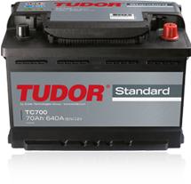 Tudor Standard